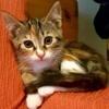 /~shared/avatars/14239842092454/avatar_1.img