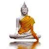 /~shared/avatars/25932143860847/avatar_1.img