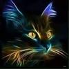 /~shared/avatars/28734709405589/avatar_1.img