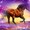 /~shared/avatars/30938547962846/avatar_1.img