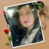/~shared/avatars/48952038546349/avatar_1.img