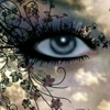 /~shared/avatars/64966870718991/avatar_1.img